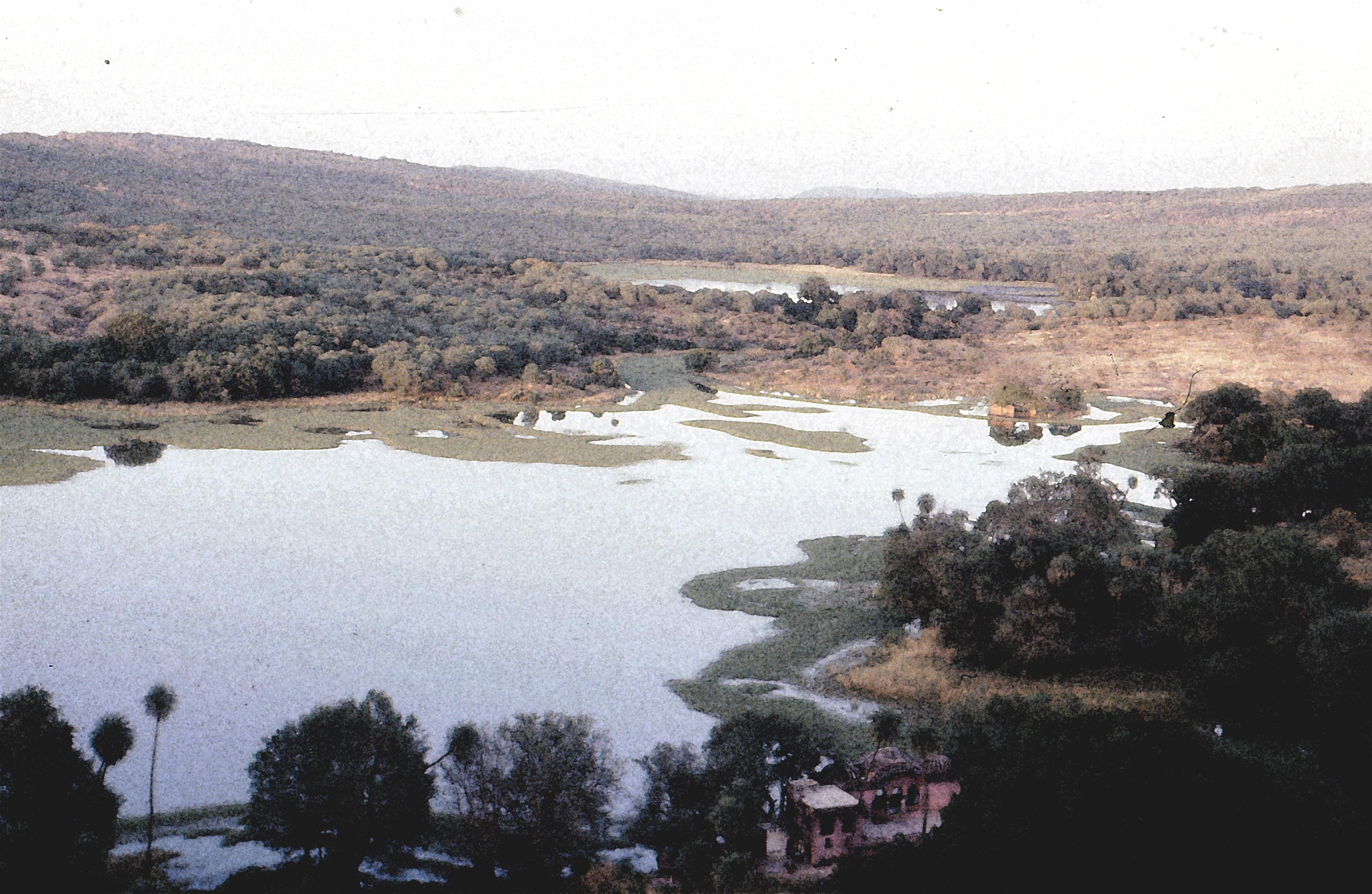 Ranthambore lodge and lake