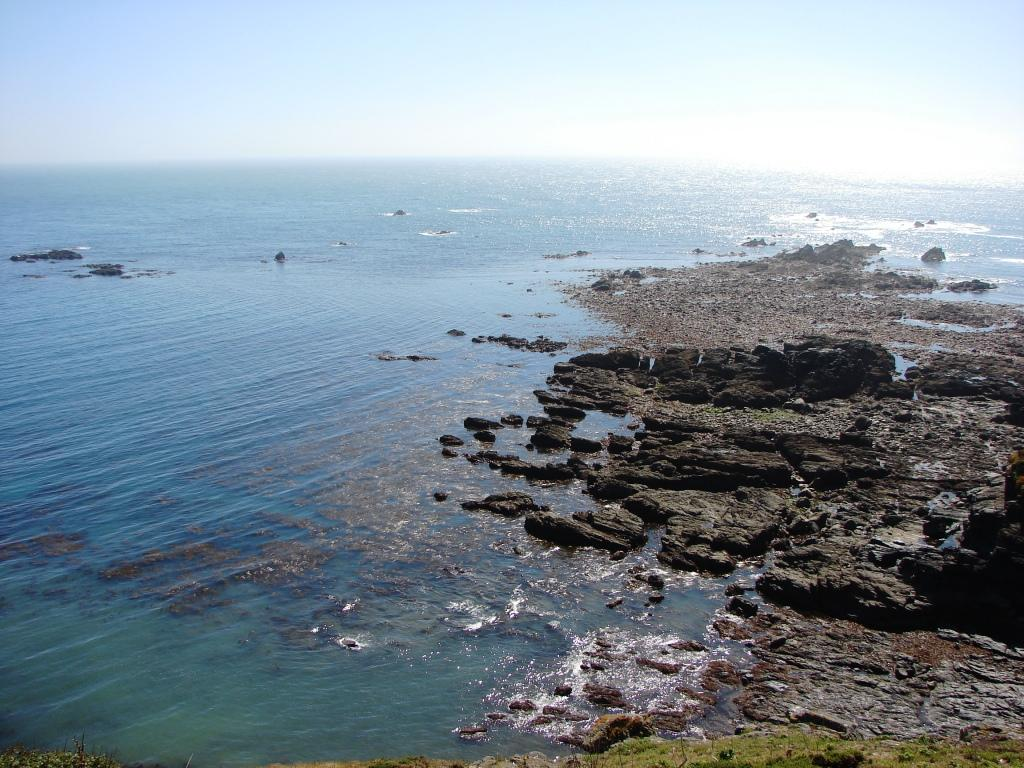 Lizard Point - comp.JPG