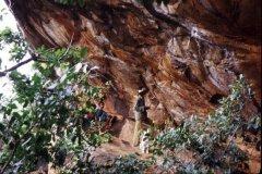 Sirumalai - rock-shelter paintings - Alangaltheri