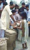 Bangladesh035
