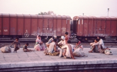 AP 1980s